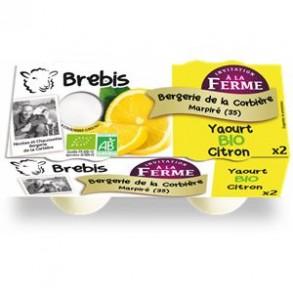 Les yaourts (brebis)-Yaourt fermier CITRON- brebis-BERGERIE DE LA CORBIERE