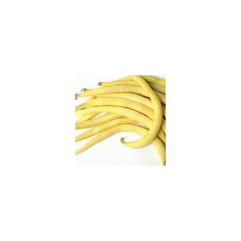 Fruits et légumes-Haricot beurre-500 g-LEGUMES DE VALBO