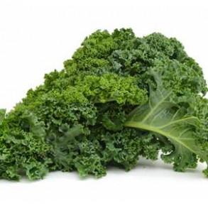 Légumes biologiques-Chou Kale bio - le kg-GABILLARD EARL