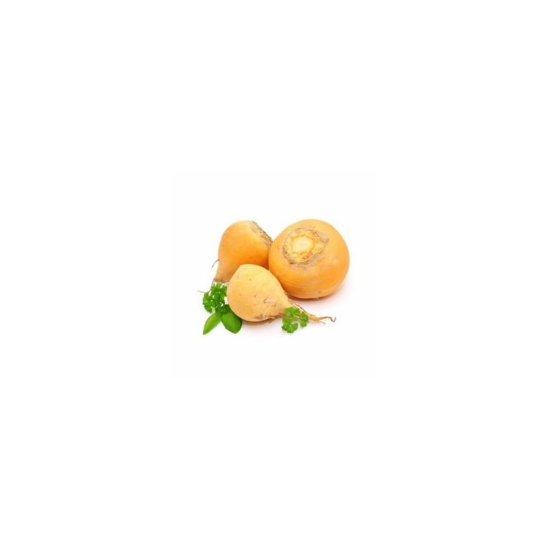 Carottes, Betteraves, navets-Le navet jaune bio - 500 grs-GABILLARD EARL