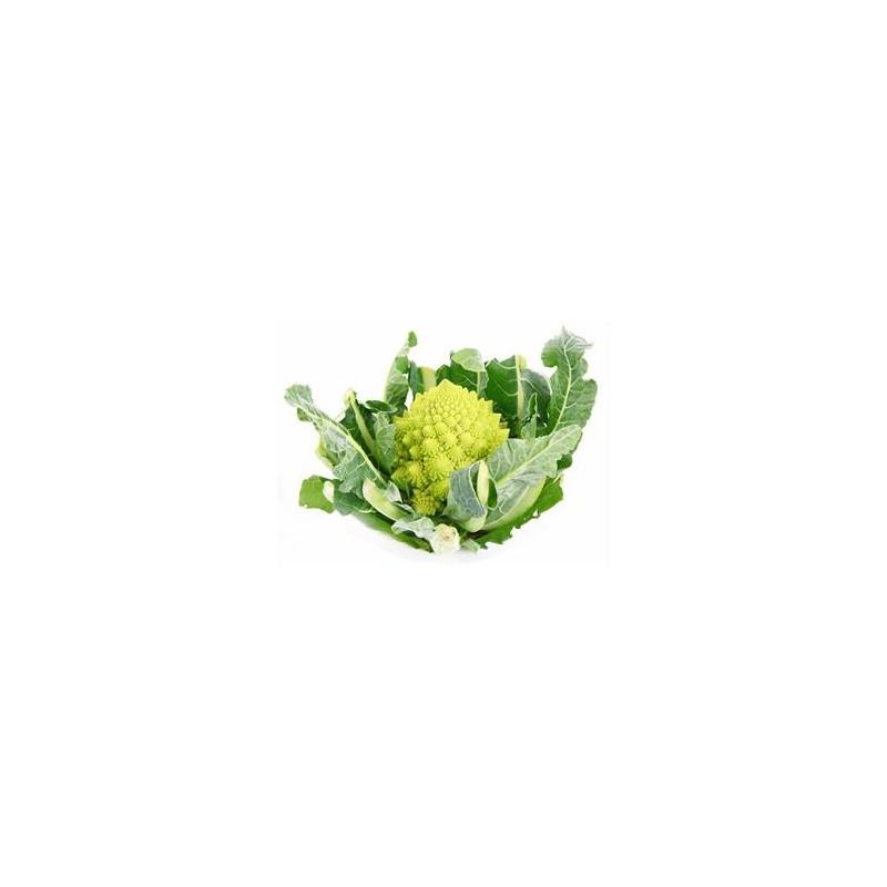 Choux, radis ...-Chou Romanesco bio- la pièce-GABILLARD EARL