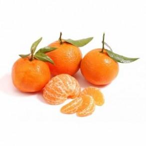 Fruits frais-Clémentine (Corse) reconversion BIO - Kg-BIO RENNES