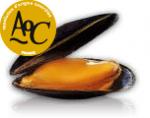Coquillages et crustacés-Moule AOC Baie du Mont st Michel - 500 g-POISSONNERIE SOHIER