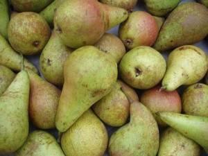 Fruits BIO-Poire Guyot bio- Kg-BIO RENNES